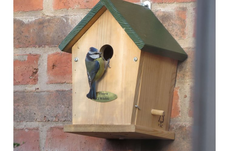 Considering putting up a Nest Box?