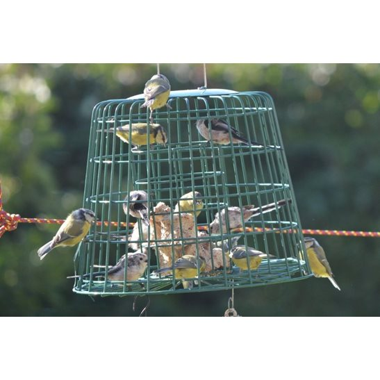 additional image for Fat Ball and Suet Feeder Guardian