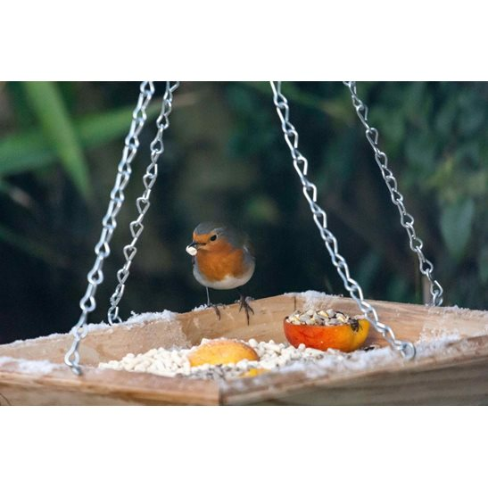 additional image for Hanging Bird Feeder Tray